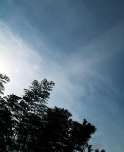 sky_01